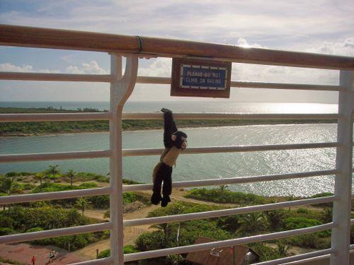 Monkeyclimbing