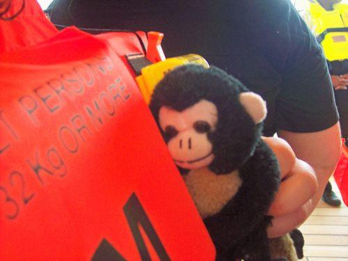 Monkeywithlifejacket
