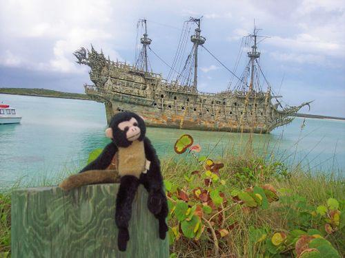 MonkeyPirateShip